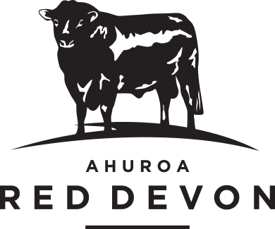 Ahuroa Red Devon